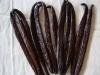 Vanilla Tahitensis from Tahaa
