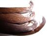 Vanilla-Trade Mexico planifolia