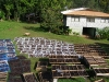 Vanilla beans drying