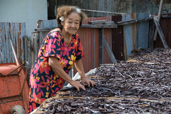 Jean Chan (or Jeanne Chan) Tahiti's Vanilla Queen. Photo: Art Pollard. Amano Artisan Chocolate.